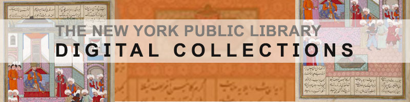 graphic with text of new york public library digital collection